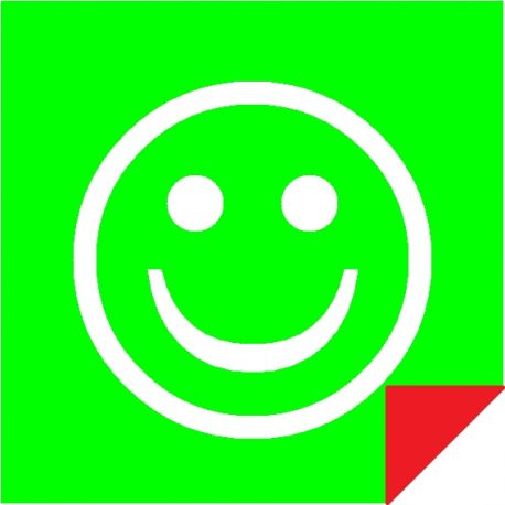 Smiley Vert / Rouge Magnétique Double Face